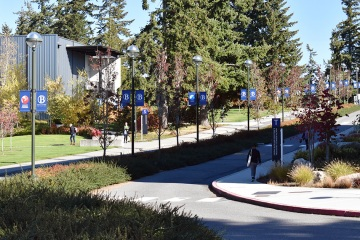 bellevue-college-pole-banners-03_gallery