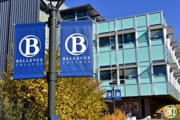 bellevue-college-pole-banners-10_gallery