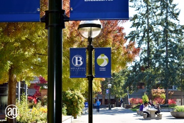 bellevue-college-pole-banners-31_gallery