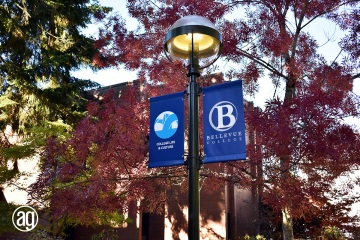 bellevue-college-pole-banners-34_gallery
