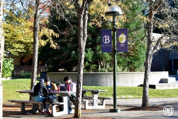 bellevue-college-pole-banners-64_gallery