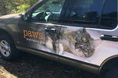 PAWS-SUV-Wrap-2