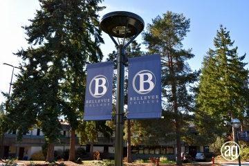 bellevue-college-pole-banners-01_gallery