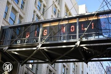 skybridge-2_gallery