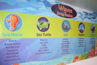 Visual Magnetics Installation for a Seattle Small Business